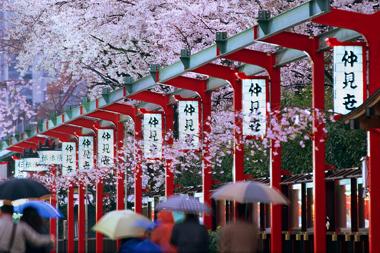 Văn hóa, con người Nhật Bản