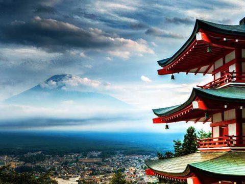 Sự lựa chọn đi Nhật
