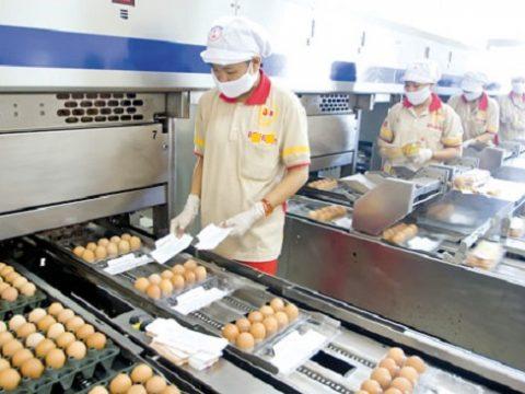 Tuyển 3 Nam – 3 Nữ Chế biến thực phẩm quay lại phỏng vấn 18/12/2019